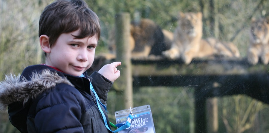 The new Cots Wild Explorer activity trail at Cotswold Wildlife Park