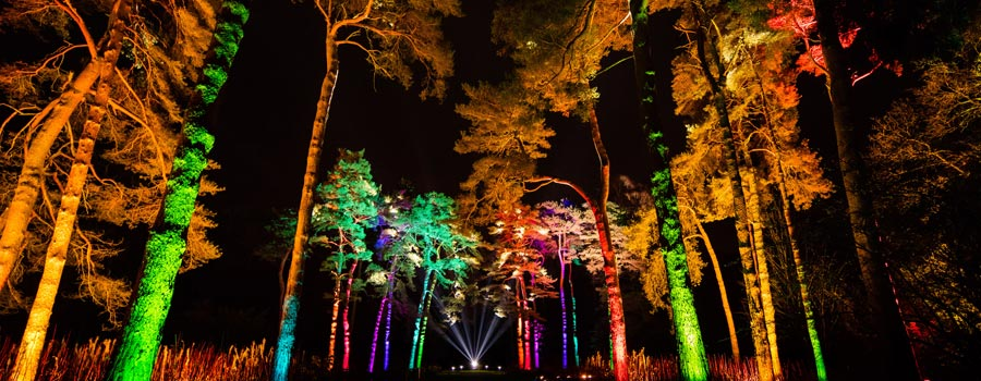Enchanted Christmas at Westonbirt (photo by Paul Groom)