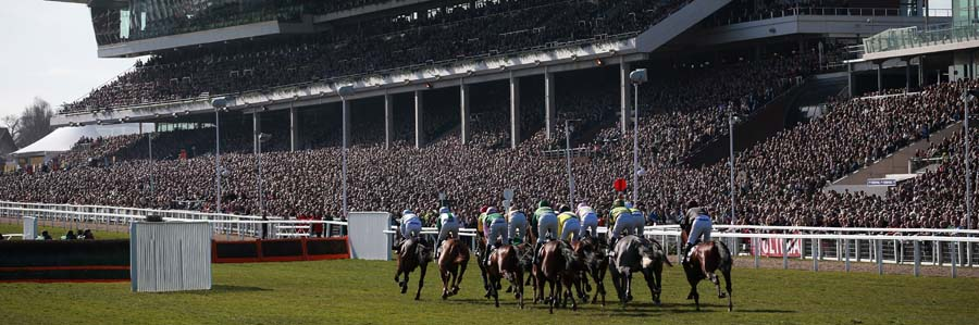 The Cheltenham Festival 14-17 March 2017