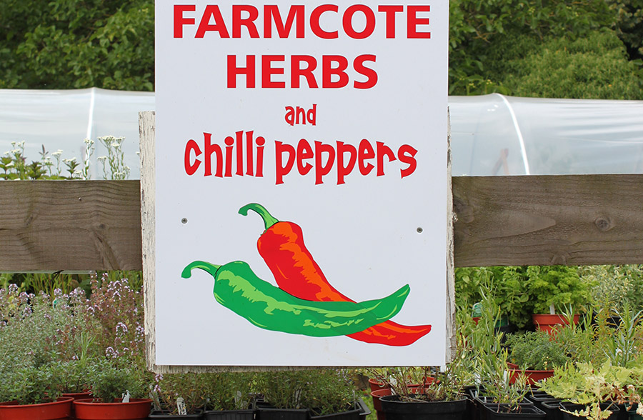 Farmcote Herbs and Chilli Peppers