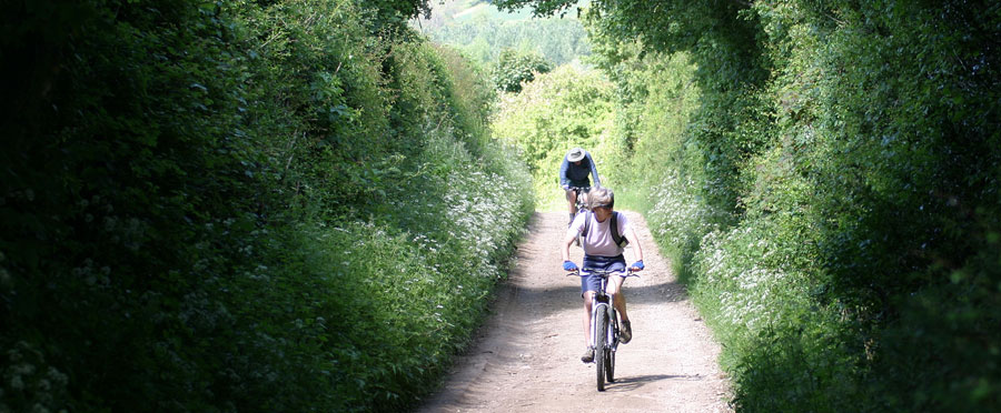 Cycling down a quiet bridleway
