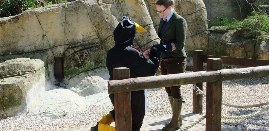 Penguin themed proposal at Cotswold Wildlife Park and Gardens