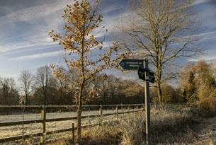 Winter walks in the Cotswolds