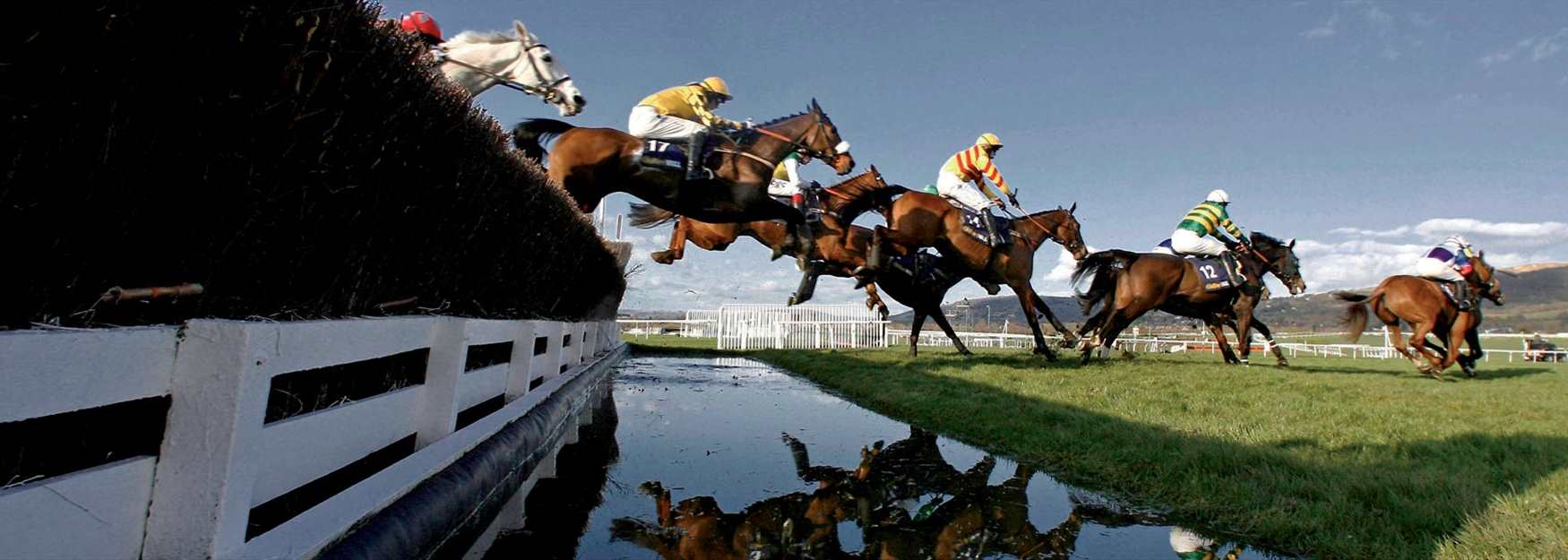Cheltenham - the jewel in jump racing's crown