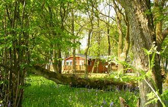 Bluewood Lodges, Kingham