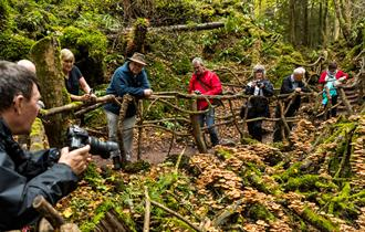 Forest of Dean Group Photography Experience
