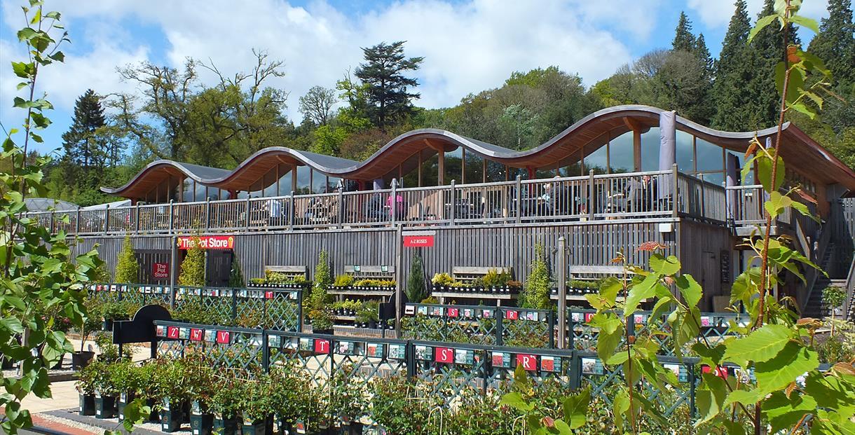 Garden Centre Tea Rooms